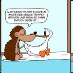 Der Wo Ente: Fitness Programm